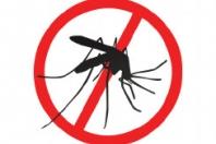 Insectenscreens